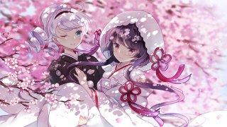 樱花树下的和服琪亚娜和芽衣