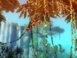 用心看世界 九阴东海绚丽风景欣赏