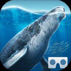 海洋世界VR2