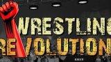 摔跤革命二