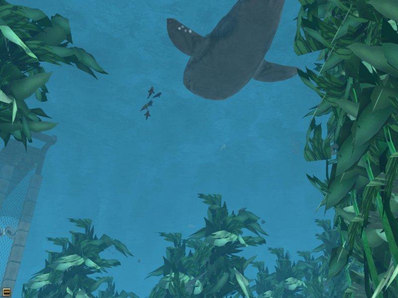 野生动物园2 - 海洋世界截图第1张