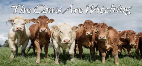 奶牛在看着