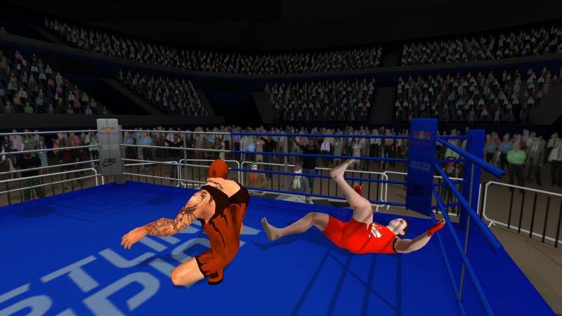无规则摔跤截图第4张