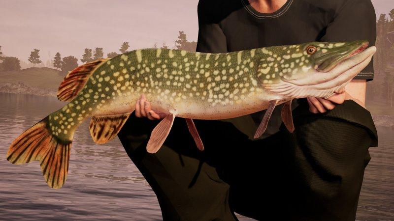 钓鱼模拟世界截图第3张