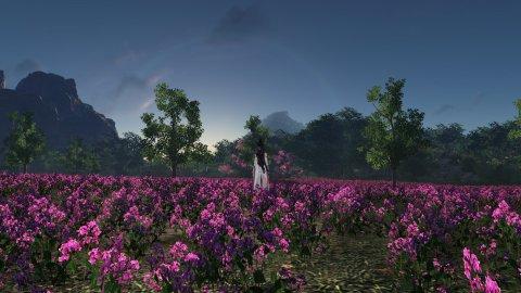 《天涯明月刀》美景第2张