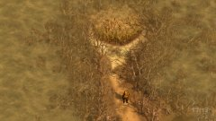 山谷-游戏截图