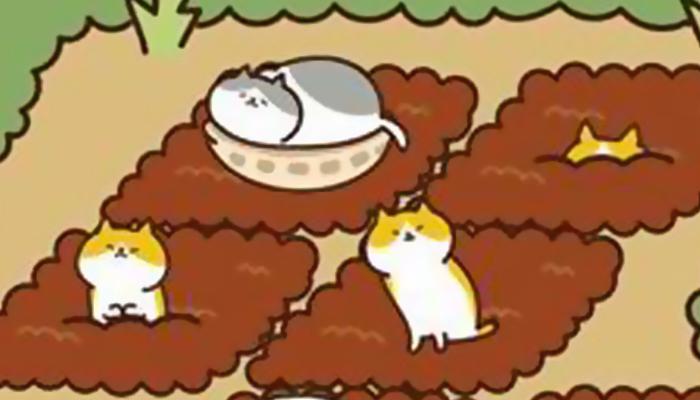 《猫咪田园》试玩视频-17173新游秒懂